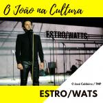 Estro-Watts